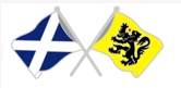 Lapel Badge Saltire / Flemish