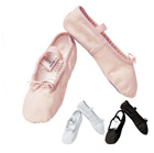 Ballet Shoe Canvas - Sansha